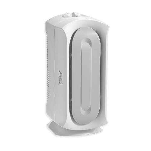Hamilton Beach TrueAir Air Purifier for Home or Office with Permanent True HEPA Filter for Allergies and Pets, Ultra Quiet, White (04383A)