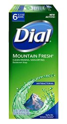 Dial Antibacterial Bar Soap, Mountain Fresh, 3.2 Ounce, 6 Bars